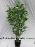 Валы Hx010501 фабрики оптовые поддельный Bamboo для крытого украшения
