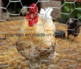 Rede de fio sextavada pequena da galinha do engranzamento