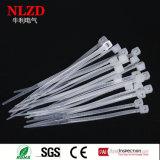De vrije Banden van de Kabel van Steekproeven Transparante Nylon met de Levering voor doorverkoop van Ware grootten direct van Fabrikant