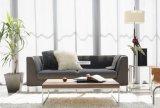 간단한 경치가 좋은 거주 Prefabricated 집