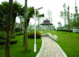 LED al aire libre Jardín de inducción de luz modernas luces solares