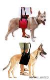 Nylon Hurt vendajes cuidado del perro Tire de la correa de perro de malla Ayuda