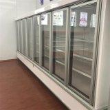 De Koeler van de Ijskast van Dislpay van de supermarkt met de Deur van het Glas