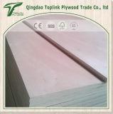 12 mm Industrial Comercial madera contrachapada para el precio barato del álamo Core Okoume / Frente Bintangor