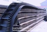 Macchina del nastro trasportatore delle mercanzie del commercio all'ingrosso della Cina e nastro trasportatore poco costosi del muro laterale del modulo di onda
