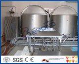 производственная линия мороженное мороженного молока
