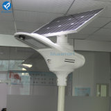 Luz de rua solar ao ar livre do diodo emissor de luz de Bluesmart com painel solar