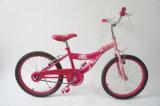 [و-1617] [دورا] أطفال درّاجة بنات درّاجة [أم] صاحب مصنع درّاجة