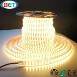 Indicatore luminoso esterno della decorazione del doppio di riga LED di SMD5050 220V 240V indicatore luminoso della corda