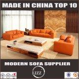 Muebles de sala de estar que mejor venta en Australia Sofá de cuero de plumas