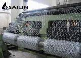 Il pollame esagonale della rete metallica di Sailin recinta