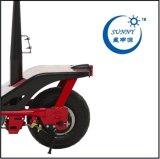 1000W 36V 12ah Etwow, motorino elettrico di E-Twow S8