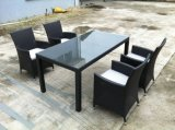 Jogo de jantar ao ar livre (SC-B7015-L-DB)