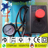 compresseur d'air rotatoire portatif Diriger-Piloté par 5HP de vis