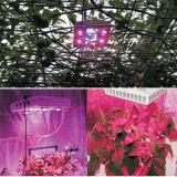 hohe Leistung 600W PFEILER LED wachsen helles Hydroponik-Gemüse, das volle Spektrum-Pflanze Licht wachsen