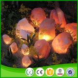 Lampada Himalayan naturale del sale del cristallo di roccia con la base di legno