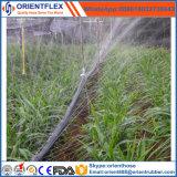 حديقة ماء [بلستيك متريل] [دريب يرّيغأيشن] خرطوم دقيقة رذاذ زراعة [ب] شريط