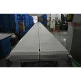 Transporte de correia reto do PVC do produto comestível de Hairise