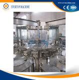 Automatische Hete het Vullen van het Sap Machine/Apparatuur/Lijn