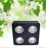500W vegetales Bloom Full Spectrum Panel LED crecen la luz