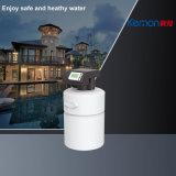 Purificação de água central de 1 tonelada com válvula automática