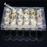 Bandeja de ovo de codorna de plástico descartável descartável da China para Incubadora
