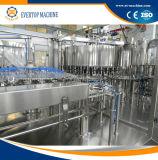 Terminar a linha de processamento do suco/suco automáticos que faz a máquina