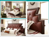 De comfortabele Reeks van het Beddegoed van het Meubilair van het Huis (A801)