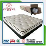 Gold Supplier China Factory Pocket Spring Mattress für Sale