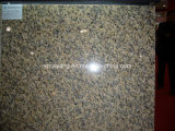 Тигр Skin Yellow Granite Slab для Countertops (YQC)