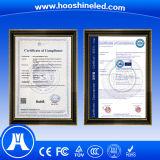 Prezzo dell'interno del quadro comandi del LED di vendita calda P4 SMD2121