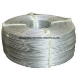 Steel inoxidable Wire (0.2-3.0mm)