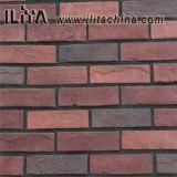 قرميد قراميد لأنّ جدار [كلدّينغ] زخرفة (18038)