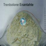 99%純度のステロイドのTrenbolon Enanthateのステロイド