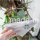 het Blad van het Polycarbonaat van 5mm voor de Muren van de Bescherming binnen Gebruik