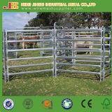 Le panneau galvanisé de frontière de sécurité de bétail de pipe, bétail de tube en métal clôturent le panneau