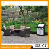Grade de cozimento ao ar livre do gás do BBQ da mobília do jardim da qualidade de Realable opcional com roda