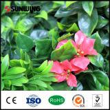 저가 자연적인 다채로운 인공 꽃은 SGS 세륨을%s 산울타리 위원회에 남긴다