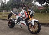 Motocicleta CEE Scooter elétrico de disco duplo de freio Garfo frontal colorido