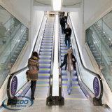 Эскалатор пассажира коммерчески хозяйственного коммерчески мола здания селитебный