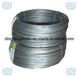 Collegare di tungsteno incagliato famoso di elevata purezza di marca 99.95% della Cina