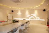 Acryl Stevige Countertop van de Oppervlakte Plakken en Bladen
