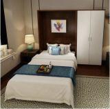 2016 Sepsion Новый дизайн Главная Furnitures Single Murphy Wall Кровать с Desk FJ-22