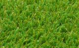 Hohes Standard Synthetic Football Turf/Artificial Grass für Soccer