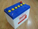 Asciugare la batteria della carica, l'accumulatore per di automobile ricaricabile, la batteria al piombo di memoria (N50)