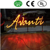 Carta de la muestra de la iluminación LED de Arylic del acero inoxidable
