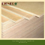 Poplar Core Birch Contraplacado comercial