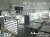 De Schijnwerper LED van Dimmable 6000W met 5years Warranty