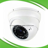 2MP 1080PIRL Dome Tvi kabeltelevisie Camera