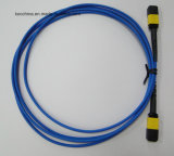 MPO/APC-MPO/APC Fiber Optic Cable